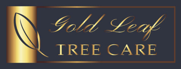Gold Leaf Tree Care